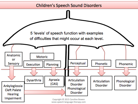 speech disorder Mayo clinic speech–language pathologists are involved in clinical research aimed at answering questions about a variety of congenital, developmental, and acquired disorders that affect.